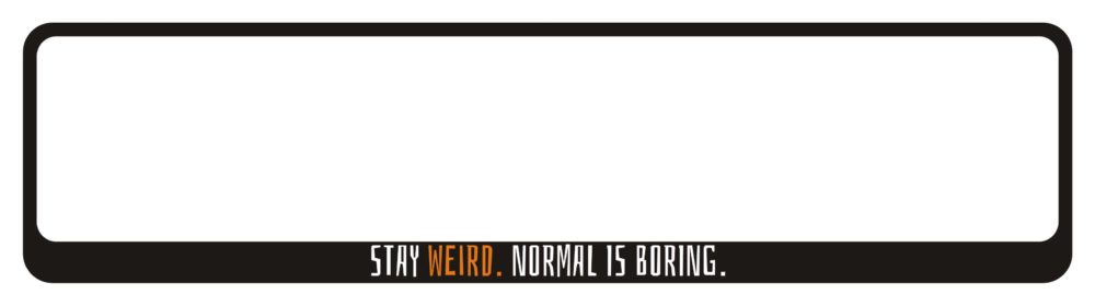 LATSIGN-Auto-numura-turetajs-paliktnis-uzlime_Halloween_Stay_weird_Normal_is_borring